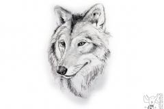 Wolf Grafiet Houtskool